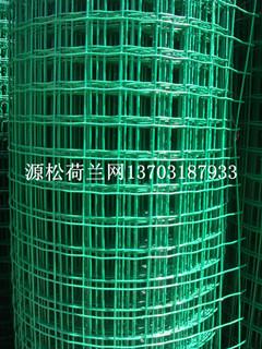 <b>浸塑电焊网</b>